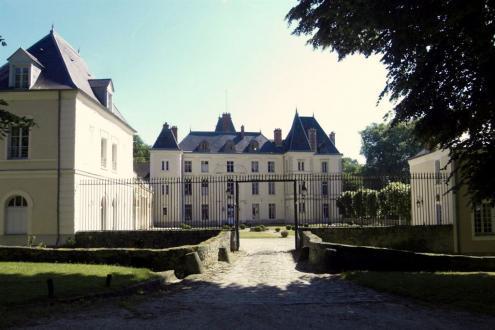 Château / Manoir de luxe à vendre LA FERTE ALAIS, 1500 m², 13 Chambres, 5980000€