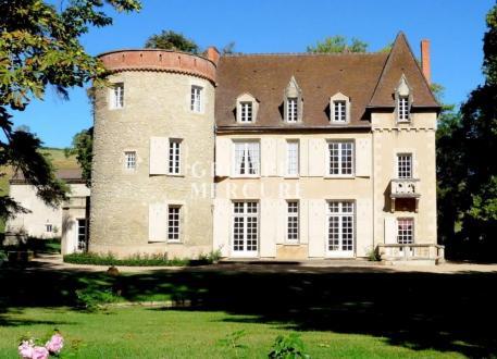 Luxus-Schloss / Herrenhaus zu verkaufen CLERMONT FERRAND, 500 m², 9 Schlafzimmer, 1490000€