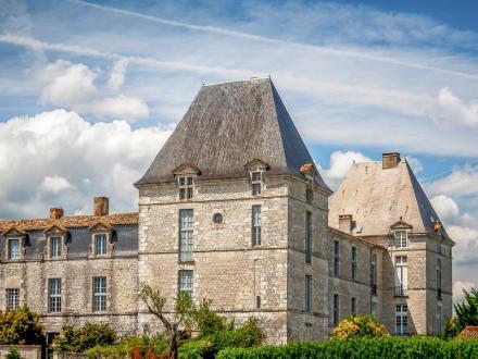 Luxus-Schloss / Herrenhaus zu verkaufen BERGERAC, 378 m², 4 Schlafzimmer, 593600€