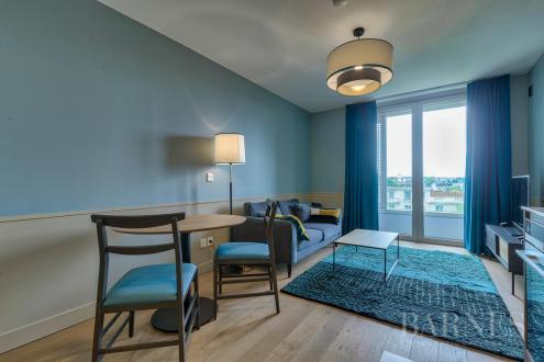 Appartement de luxe à louer PARIS 16E, 35 m², 3500€/mois