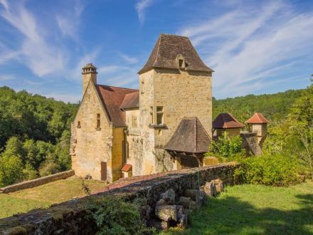 Château / Manoir de luxe à vendre SAINT CYPRIEN, 230 m², 4 Chambres, 980500€