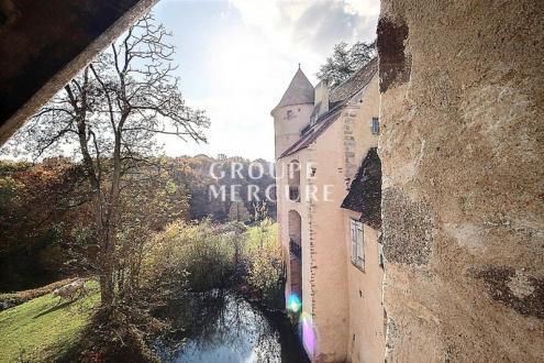Château / Manoir de luxe à vendre ARGENTON SUR CREUSE, 400 m², 7 Chambres, 787000€