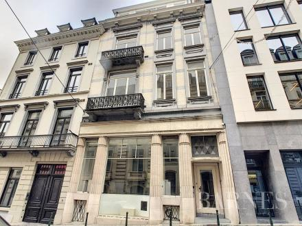 Immeuble de luxe à vendre BRUXELLES, 1350 m²