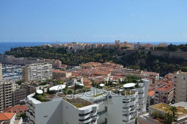 Verkauf Prestige-Wohnung Monaco